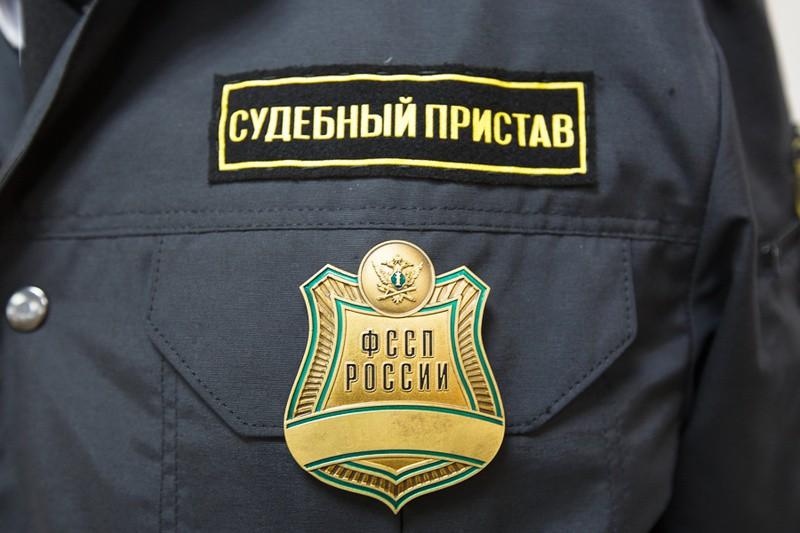 Судебные приставы Самарской области провели День открытых дверей