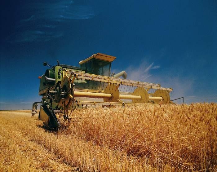 ВКурской области заканчивается уборка зерновых культур