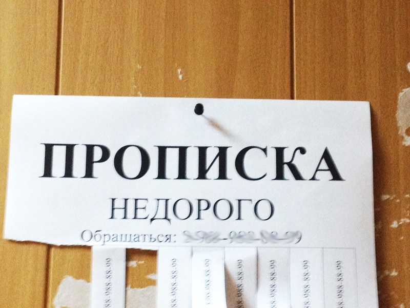 Жительница Апатитов незаконно прописала у себя граждан Таджикистана