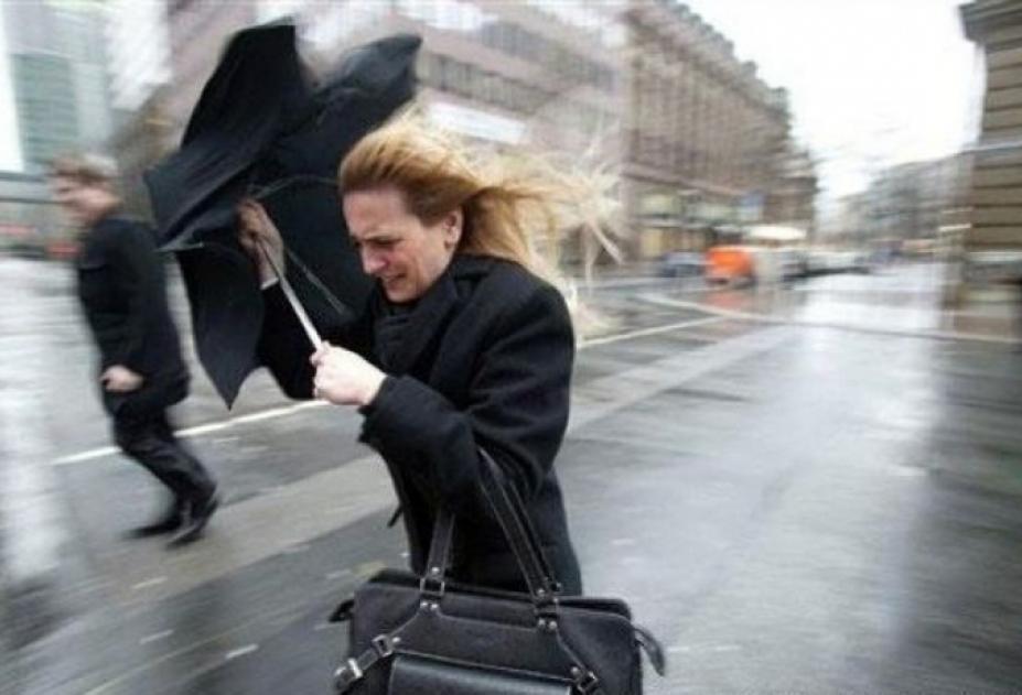 Мокрый снег идождь ожидаются в столице России  ввыходные