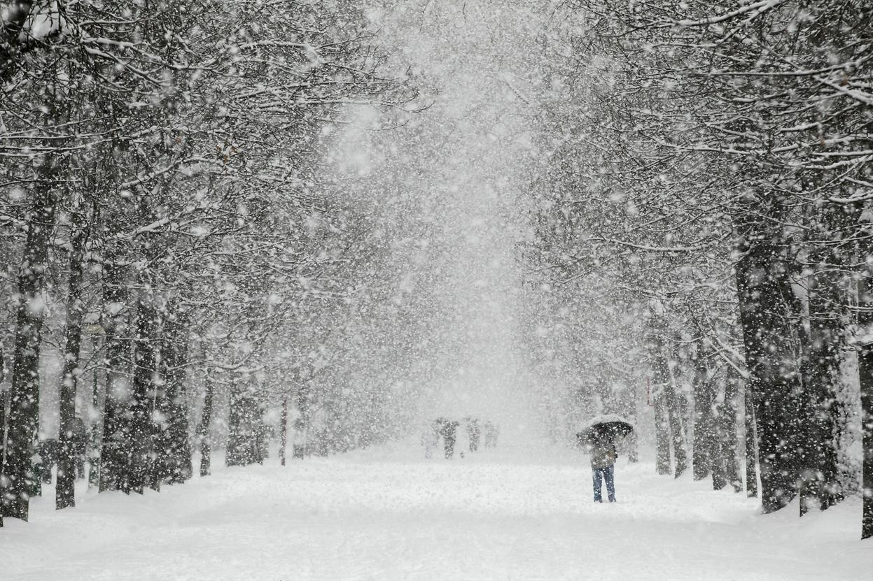 венеры был большой снегопад картинки главные