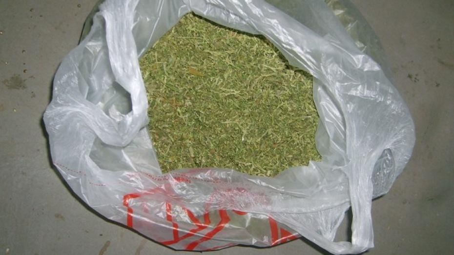 Марихуана в кинешме семя конопли как купить